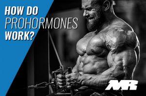 How Do Prohormones Work?
