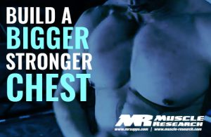 building A Bigger Stronger Chest