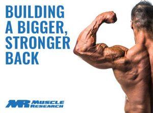 building Bigger Stronger Back