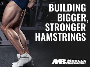 building Bigger Stronger Hamstrings