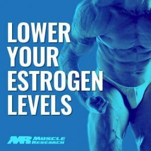 lower Estrtogen in Men