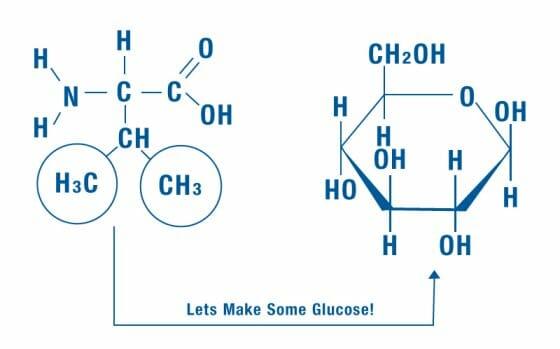 Glucose illustration